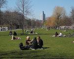 Grüne Stadt für alle? Zu aktuellen Herausforderungen von Stadtgrüngestaltung und sozialverträglicher Entwicklung