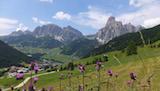 """Räumliche und zeitliche Aspekte der Ökosystemleistung """"Erholungs- und Freizeitaktivitäten"""" im Alpenraum"""