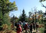 """Bestimmung des Wertes der Ökosystemleistung """"Erholung"""" deutscher Nationalparks mit Hilfe der Reisekostenmethode"""