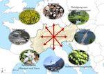 Verbessertes Verständnis der Beziehungen zwischen Ökosystemleistungen durch Integration von Angebot, Nutzen und Nachfrage