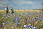 Die Bereitschaft von Unternehmen zur freiwilligen Zahlung für Biodiversität und Ökosystemleistungen